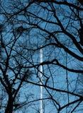 Derecho a través del cielo azul marino Fotografía de archivo