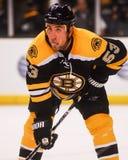 Derek Morris, Boston Bruins Fotografia Stock Libera da Diritti