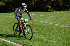 Pro Mountain Biker Stock Photo