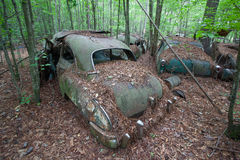 Derelict car covered in debris. Old saloon (sedan) car in derelict condition left in a scrap yard and covered in leaves and debris, forest background Royalty Free Stock Image