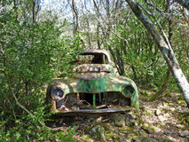 Derelict car in forest Stock Images