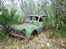 Derelict car in forest Royalty Free Stock Photography