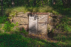 Derelict old door in stone wall covered by vegetation Royalty Free Stock Photo