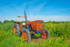 Derelict old tractor in a field in summer Stock Photos