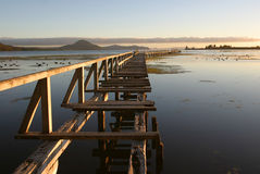Derelict Pier 3. Derelict Pier at sunrise on Lake Taupo, New Zealand royalty free stock photography