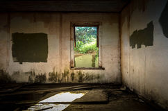 Derelict Room. With window looking out on overgrown area Stock Photos