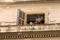 Derelict window and balcony on old builiding in Psirri neighborh. Ood, Athens. Photo taken in April, 2016 Stock Photography