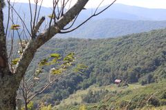 Dereszowaty Halny Appalachian śladu widok zdjęcie stock
