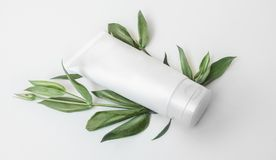 Derisione d'imballaggio della plastica del cosmetico organico naturale su con le foglie ed i fiori Bottiglia del modello per marc immagini stock
