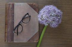 Derisione del taccuino su per materiale illustrativo con allium e vetri porpora Vista superiore Posto per testo Fiore fresco Fotografie Stock
