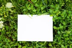 Derisione di vista superiore sulle foglie con il posto di carta della nota per testo Fondo verde falso con lo spazio della copia immagine stock