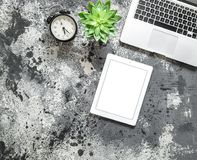 Derisione piana di disposizione sul succulente dell'orologio della compressa del computer portatile del posto di lavoro dell'uffi immagine stock libera da diritti