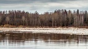 Deriva del ghiaccio dell'inondazione della primavera stock footage