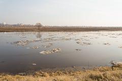Deriva del ghiaccio della primavera Fotografia Stock