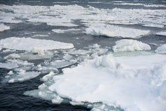 Deriva del hielo de Abashiri en el océano frío cerca de Japón fotografía de archivo libre de regalías
