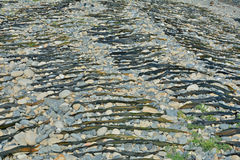 Deriva-mala hierba de sequía 9 Imagen de archivo libre de regalías