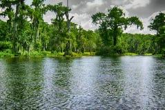 Derivar em um barco em Wakulla salta parque estadual Foto de Stock Royalty Free