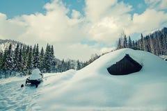 Derivas de la nieve en el bosque del invierno Imagenes de archivo