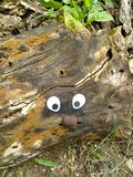 Derive a arte de madeira fotos de stock