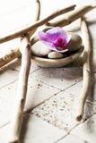 Derive la madera y el diseño mineral para la decoración suave del balneario Fotos de archivo libres de regalías