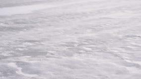 Derive la nieve en el hielo en el invierno soplado por el viento almacen de video
