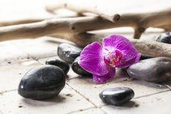 Derive a madeira e o projeto mineral para a decoração macia dos termas Fotos de Stock