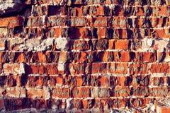 Derkający Czerwony ściana z cegieł tło dla desygn Obraz Stock