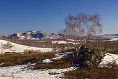 Dernière neige aux montagnes d'Ural du sud photo stock