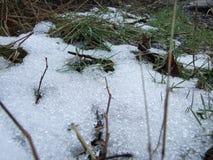 Dernière pile de vieille neige dans l'herbe Photographie stock libre de droits