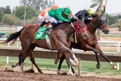 Dernières courses de cheval en Arizona jusqu'à l'automne Photo stock