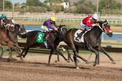 Dernières courses de cheval en Arizona jusqu'à l'automne Photo libre de droits