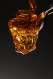 Derramamento do mel Fotografia de Stock Royalty Free