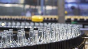 Derramamiento en las botellas de cristal en la planta Banda transportadora con las botellas de cerveza almacen de video