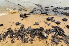 Derrame de petróleo. Playa contaminada. Fotografía de archivo
