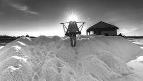 Derrame trabalhadores de sal de sal em montões Fotos de Stock