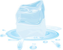Derretimento dos cubos de gelo Fotografia de Stock