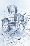 Derretimento dos cubos de gelo Fotos de Stock