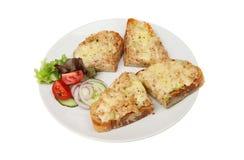 Derretimentos e salada do atum Fotos de Stock Royalty Free