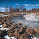 Derretimiento de la primavera el hielo en el lago Imagen de archivo libre de regalías