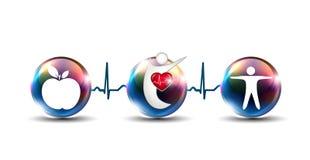 Derruba como reforçar o sistema cardiovascular Imagem de Stock Royalty Free