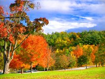 Derryfield Park in Manchester, NH. Exceptional year for foliage in Derryfield Park in Manchester, NH stock photos