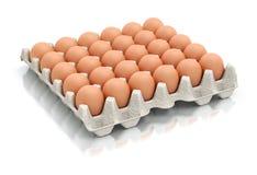 Dertig eieren in een kartonpakket Stock Fotografie