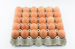 Dertig eieren op dienblad Royalty-vrije Stock Foto