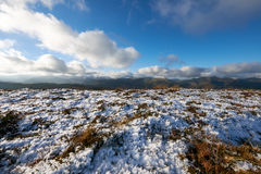 Derwent Fells, Lake District, Uk Stock Photography