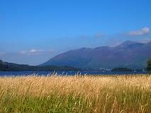 Derwent vatten, sjöområde, England Royaltyfria Foton
