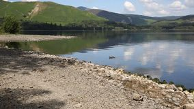 Derwent Water Lake District uk south of Keswick blue sky beautiful calm sunny summer day stock video footage