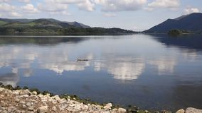 Derwent Water Lake District uk south of Keswick blue sky beautiful calm sunny summer day PAN stock video