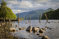 Derwentwater in Lake District. On the shores of Derwentwater near Keswick Stock Images