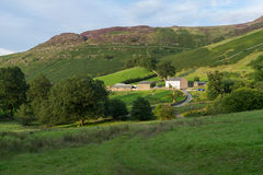 DERWENTWATER, SEE DISTRICT/ENGLAND - 30. AUGUST: Bauernhof nahe Derw Stockfotos