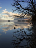Derwentwater trees Stock Photography